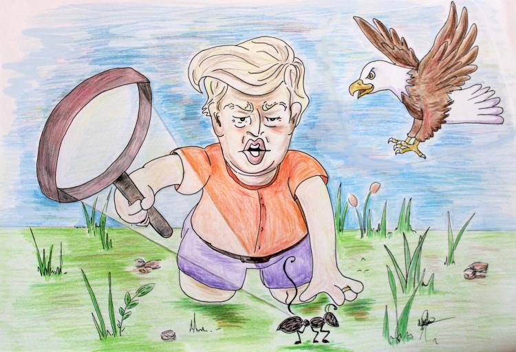 Trump Toon